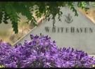 Whitehaven 2013