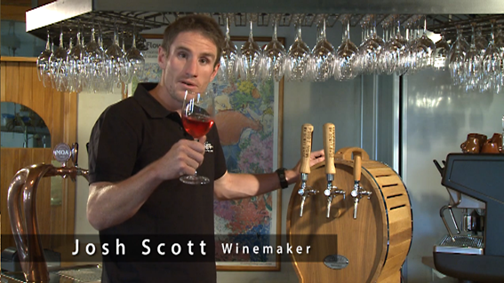 Josh Scott WBB14